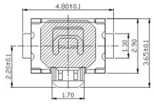 Switch RTP/RPTM Structure Diagram